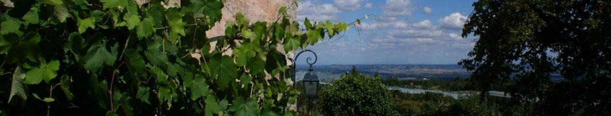 Chambre d'hôte Le Grand Noé – Pilat / Vallée du Rhône